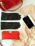 Van de de zonnebrilbeurs van leerhandschoenen van de de manierlente de klerenconcept van Autumn Womens Accessories stock foto