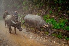 24 van December 2012, Sapa-dorp, Vietnam Royalty-vrije Stock Foto's