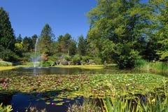 Van Dusen Gardens, Vancouver Royalty Free Stock Image