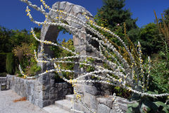 Van Dusen Gardens, Vancouver Stock Photography