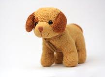 Van een hond Stock Foto's