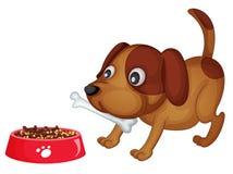 Van een hond diner Stock Afbeeldingen