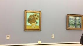 Van Gogh berömd solrosmålning i Neu Pinakothek i Munich i Tyskland lager videofilmer