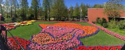 Van gogh gezicht door tulpen wordt gemaakt die stock foto's