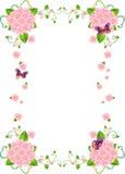 Van het Achtergrond frame van de bloem Grens Stock Afbeeldingen