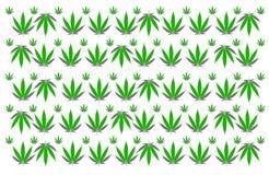 Van het achtergrond marihuanablad textuur Royalty-vrije Stock Foto's