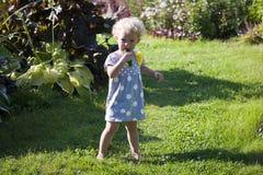 2 van het babyjaar meisje eet komkommers bij installatie Stock Fotografie