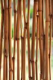 Van het bamboe (riet) de achtergrond Stock Afbeelding