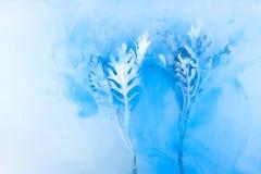 Van het bloemwater schiet het blauwe wit als achtergrond binnen onder verven acrylrook gras van het overzeese onderwater de werel stock afbeelding