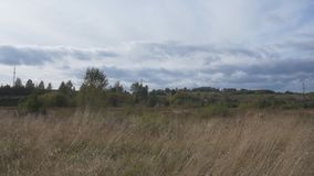 Van het bos over de lentegrassen, heuvels en weiden met pijnboombossen in het zonlicht Mooi Landschap stock video