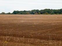 Van het Britse bruine donkere de dagvogels die landbouwbedrijfgebied de geploegde industrie bewerken Stock Afbeelding
