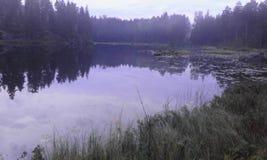Van het de aardwater van Zweden de boszomer stock afbeeldingen