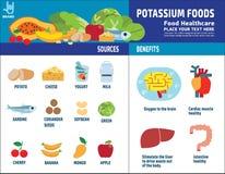 Van het de elementenpictogram van de voedselgezondheid vector infographic de brochureconcept stock illustratie