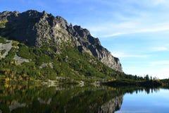Van het de hemel groene park van de bergaard de blauwe aardige reflex van het de wolkenmeer houten Stock Afbeeldingen