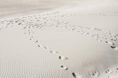 Van het de hemel oceaanzand van de de zomerzon blauwe de woestijnvoetafdrukken Royalty-vrije Stock Foto's