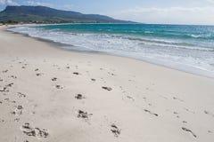 Van het de hemel oceaanzand van de de zomerzon blauwe de woestijnvoetafdrukken Stock Fotografie