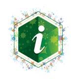 Van het de installatiespatroon van het informatiepictogram de bloemen groene hexagon knoop vector illustratie