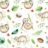 Van het de luiaardkinderdagverblijf van babydieren het naadloze het patroon schilderen De tropische tekening van waterverfboho, k stock illustratie
