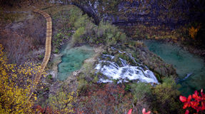 Van het de merenparadijs van Plitvice de waterval en de aard Stock Afbeeldingen