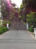 Van het de Oefeningspark van de joggingsport de manier zijmeer Stock Foto's