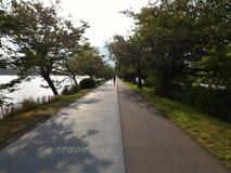 Van het de Oefeningspark van de joggingsport de manier zijmeer Royalty-vrije Stock Foto