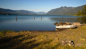 Van het de Oevermeer van de rijboot Bos van Quinault het Olympische Nationale Stock Foto's