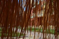 Van het de paraplugras van het strostrand het dak van de het bladpalm stock afbeelding