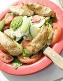 Van het de saladefruit van de tuin de kippenfilethaakwerk royalty-vrije stock foto