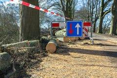 Van het de verkeerstekenonweer van verkeersproblemen de gevallen boom schade royalty-vrije stock foto
