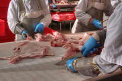 Van het de verwerkingsvlees van het varkensvlees de het voedselindustrie Stock Foto