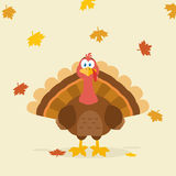 Van het de Vogelbeeldverhaal van dankzeggingsturkije de Mascottekarakter Stock Fotografie