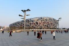 Van het de Vogelnest van Peking China het Nationale Stadion Stock Afbeeldingen