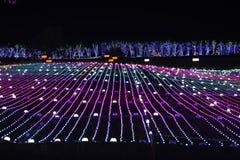 Van het festivalkorea van de Illumia Lichte Verlichting Nacht I LIEFDE U stock foto's