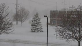 Van het het Bureaupark van Minnesota de Winteronweer stock footage