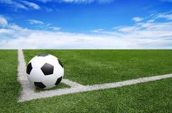 Van het het gebiedsstadion van de voetbalvoetbal van de het graslijn blauwe de hemelachtergrond Royalty-vrije Stock Foto's