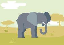 Van het het ontwerpbeeldverhaal van de olifantssavanne de vlakke vectorwilde dieren Royalty-vrije Stock Afbeelding