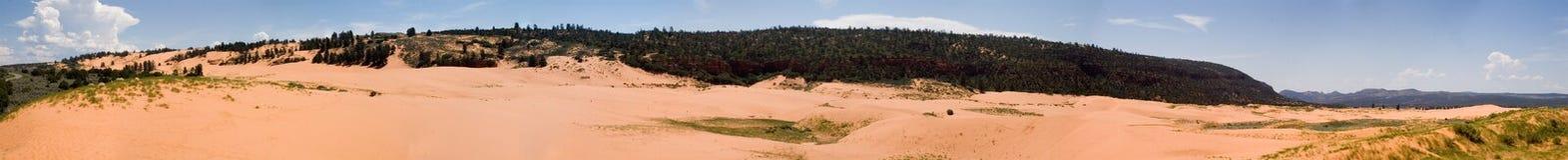 Van het het zandpark van het koraal roze panorama 1 Royalty-vrije Stock Fotografie