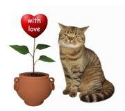 Van het kattenagronoom en hart art. stock afbeelding