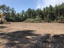 Van het landopheldering en registreren hout royalty-vrije stock afbeelding