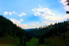 Van het Landschapsbergen en bossen van het Yellowstone Nationale Park mooie blauwe hemel royalty-vrije stock afbeeldingen