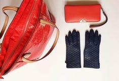 Van het Leerhandschoenen van l van vrouwentoebehoren van de de zonnebril kleedt de rode beurs de manierlente Autumn Womens Access stock afbeeldingen