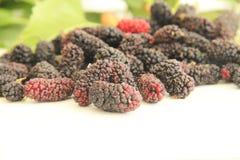 Van het het sapfruit van Blackberry rood van de het voedselvitamine heerlijk de landbouwsao Paulo Brazil royalty-vrije stock afbeelding