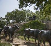 Van het sleepwerkgever en vee bronsbeeldhouwwerken Royalty-vrije Stock Foto's