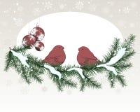 Van Kerstmis (Nieuwjaar) de kaart Royalty-vrije Stock Afbeelding