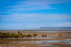 Van moddervlakten en mangroven het schiereiland van Yorke Stock Afbeelding