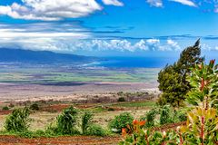 Van Omhooggaand Land Maui, Hawaï royalty-vrije stock fotografie