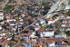 Van ottomanearchitectuur/Beypazari Huizen Royalty-vrije Stock Foto