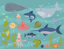 Van overzeese van het de karaktersbeeldverhaal dieren vectorschepselen van het het wild mariene onderwateraquarium oceaan van het stock illustratie
