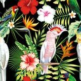 Van papegaai tropische bloemen en bladeren naadloze patroon zwarte backgr royalty-vrije illustratie