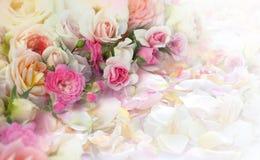 Van rozenbloemen en bloemblaadjes achtergrond Stock Afbeelding